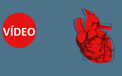Vídeos – Olhos que não veem, coração que não sente?