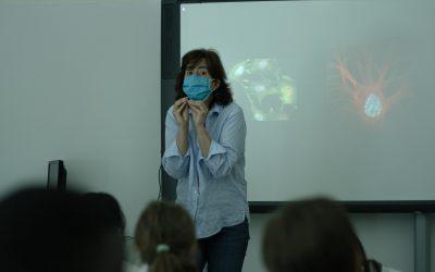 Encontro com cientista – Susana Constantino
